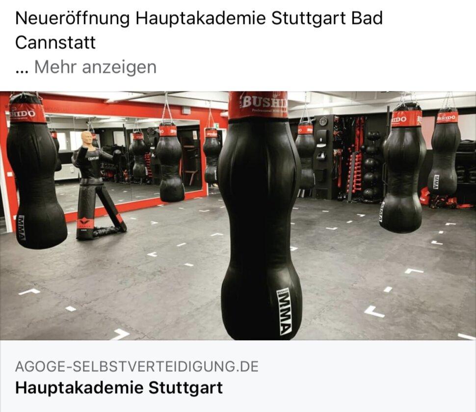 AGOGE MMA WingTsun Selbstverteidigung